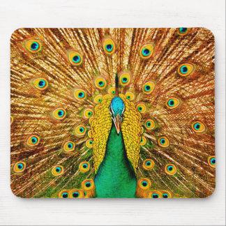 Beautiful Peacock Mouse Mat