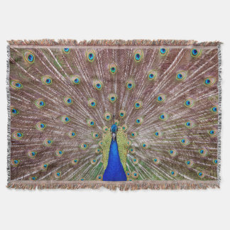 Beautiful peacock throw blanket
