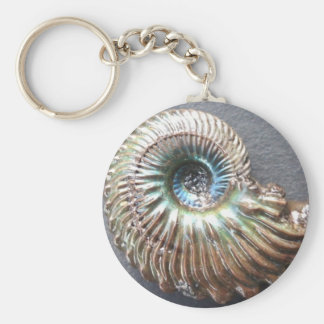 Beautiful pearly shelled ammonite fossil basic round button key ring