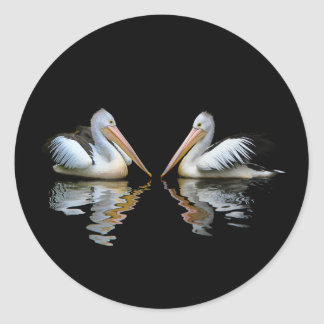 Beautiful pelicans reflection on black background round sticker