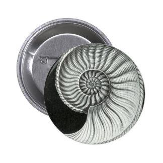 Beautiful pencil drawing of Amaltheus ammonite 6 Cm Round Badge