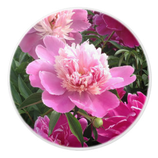 Beautiful peonies Decoration Decoration Ceramic Knob