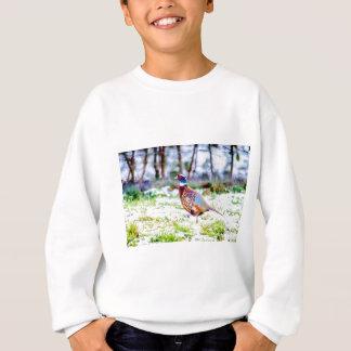 Beautiful Pheasant On Snow Covered Grass Sweatshirt
