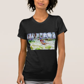 Beautiful Pheasant On Snow Covered Grass T-Shirt