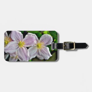 Beautiful pink clematis flowers tag for luggage