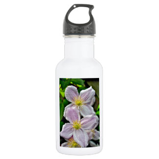 Beautiful pink clematis flowers 532 ml water bottle