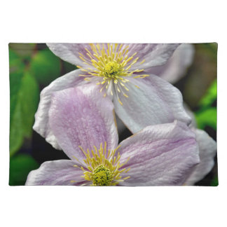 Beautiful pink clematis flowers placemats