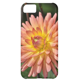 Beautiful pink dahlia floral print iPhone 5C case