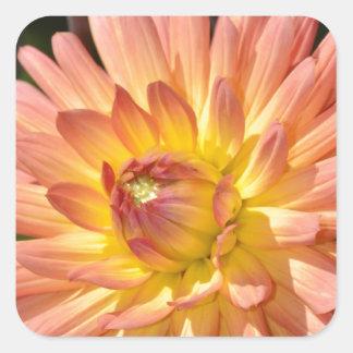 Beautiful pink dahlia floral print square sticker