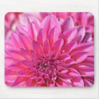 Beautiful pink dahlia flower blossoms mouse mat