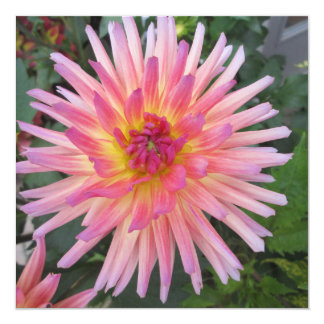 Beautiful Pink Dahlia Flower 13 Cm X 13 Cm Square Invitation Card