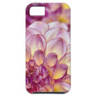 Beautiful pink dahlia flowers iPhone 5 cover