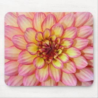 Beautiful pink dahlia mousepad