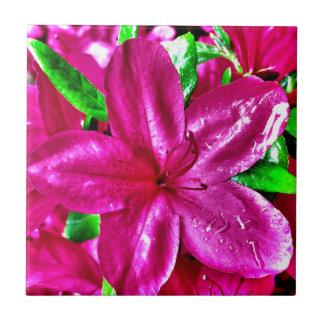 Beautiful Pink Floral Azalea Tile