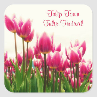 Beautiful Pink Floral Photo - Tulip Blooms Square Sticker