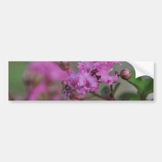Beautiful Pink Flowers Bumper Stickers