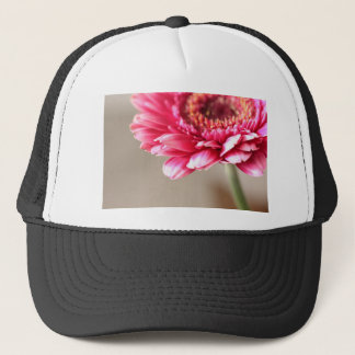 Beautiful pink gerbera on beige trucker hat