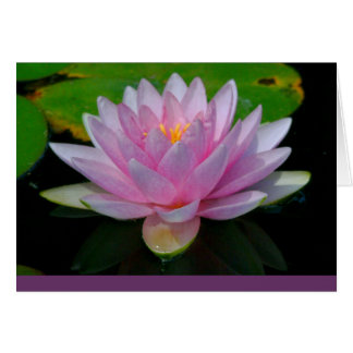 """BEAUTIFUL PINK LOTUS BLOSSOM"" (PHOTOG.) CARD"