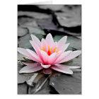 Beautiful Pink Lotus Flower Waterlily Zen Art Card