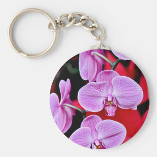 Beautiful pink moth orchids keychain