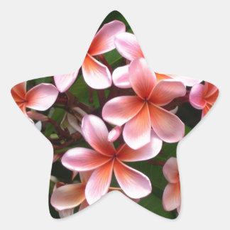 Beautiful pink Plumeria flower Stickers