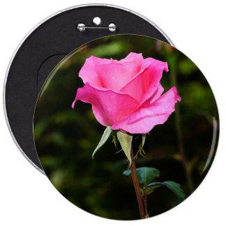 Beautiful pink rose 6 cm round badge