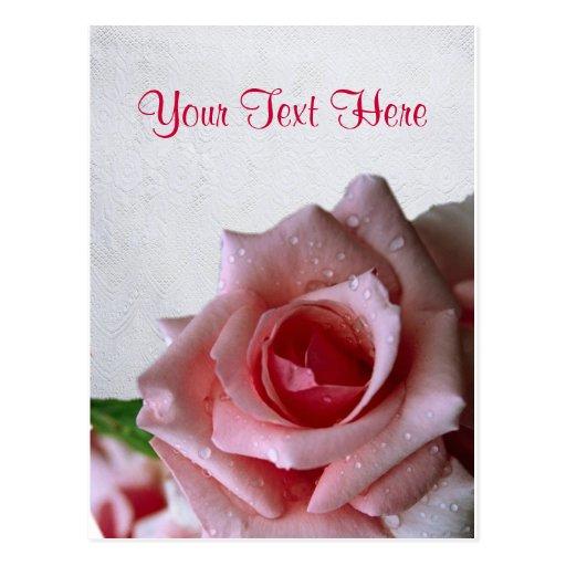 Beautiful Pink Rose Bud Design Post Card