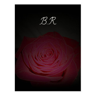 Beautiful pink rose on a black background postcard