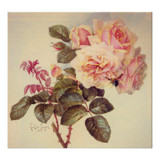 Beautiful Pink Roses and a Bee by Paul de Longpre Poster