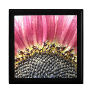 Beautiful Pink Sunflower Gift Box