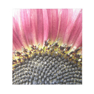 Beautiful Pink Sunflower Notepad