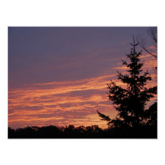 Beautiful Pinkish Coloring Skies Value Poster