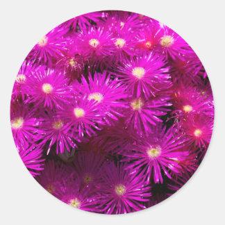 Beautiful Pretty Purple Flowers Custom Gifts Round Sticker