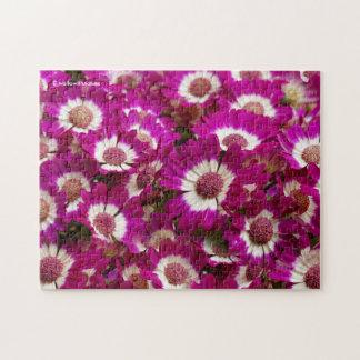 Beautiful Purple Cineraria Flowers Jigsaw Puzzle
