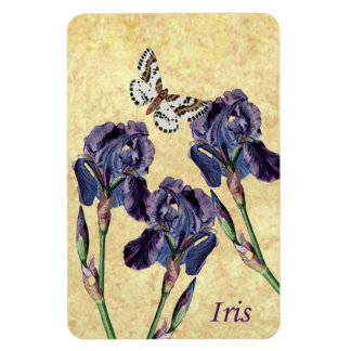 Beautiful Purple Iris Flowers and Butterfly Magnet