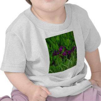 Beautiful Purple Iris T-shirts
