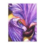 Beautiful Purple Iris Wrapped Canvas Prints
