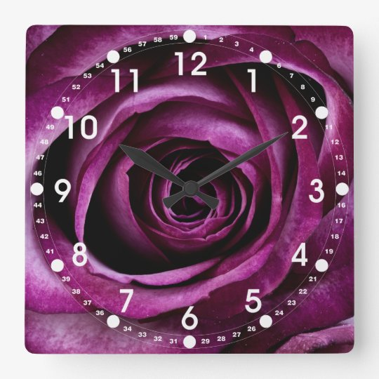 Beautiful Purple Rose Flower Petals Girly Gifts Square