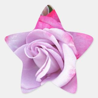 Beautiful purple rose print star sticker