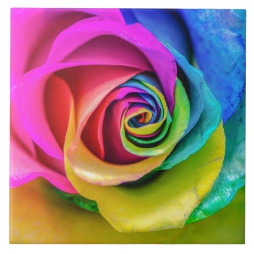 Beautiful Rainbow Rose Ceramic Tile