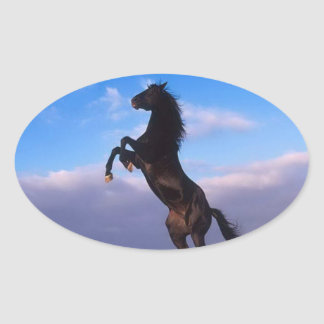 Beautiful rearing black horse with blue sky oval sticker