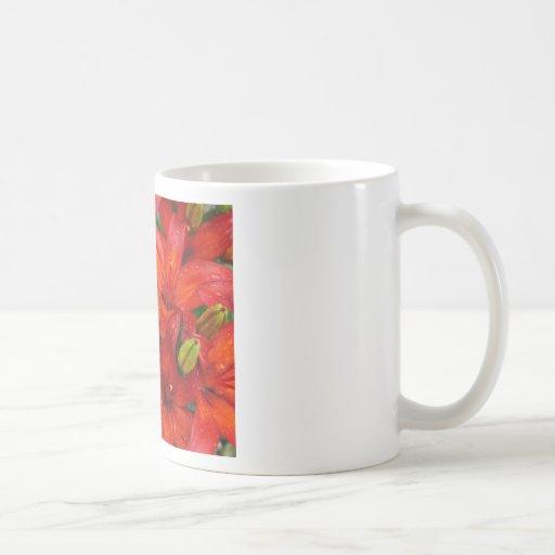 Beautiful red aztek lilies after rain coffee mug
