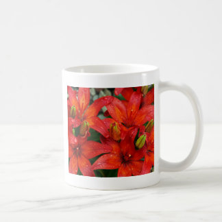Beautiful red aztek lilies after rain coffee mugs