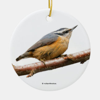 Beautiful Red-Breasted Nuthatch on a Branch Round Ceramic Decoration