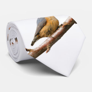 Beautiful Red-Breasted Nuthatch on a Branch Tie