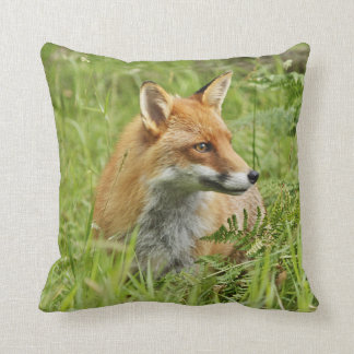 Beautiful Red Fox among Ferns Cushion