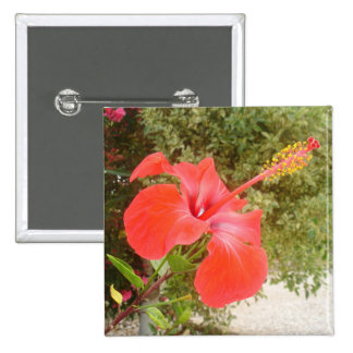Beautiful Red Hibiscus Flower With Garden Backgrou Pinback Buttons