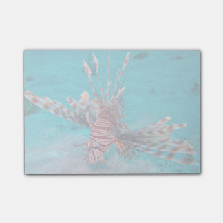 Beautiful Red Lion Fish Post-it Notes