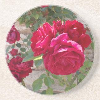 Beautiful Red Rose Beverage Coasters