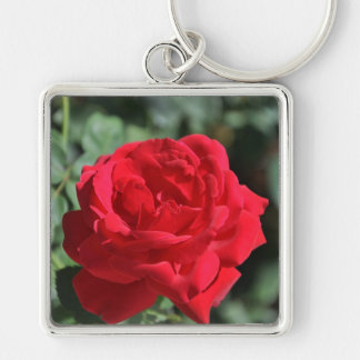 Beautiful red rose key chains